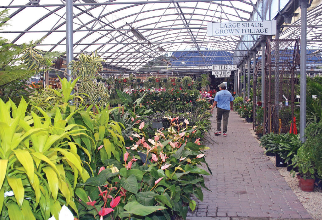 Merveilleux LORI YOUNG/FLORIDA WEEKLY At Driftwood Garden Center In Naples, Shoppers  Can Find A